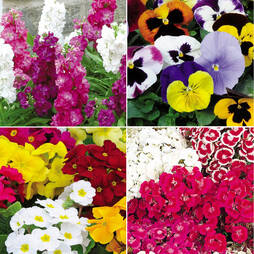 Winter Bedding Lucky Dip