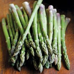 Asparagus officinalis 'Ariane' (Seeds)