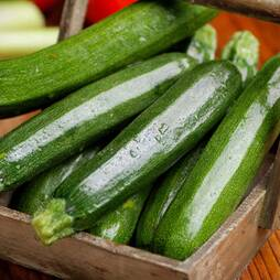 Courgette 'Green Bush' (Seeds)