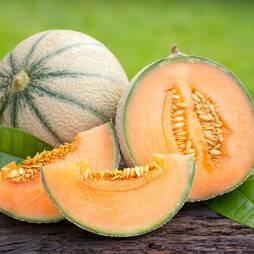 Melon 'Emir' F1 Hybrid (Seeds)
