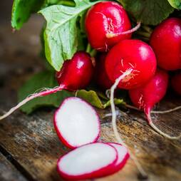 Radish 'Cherry Jolly' (Seeds)