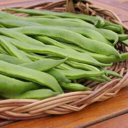 Runner Bean 'Desiree' (Seeds)