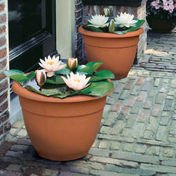 Terracotta effect Planter