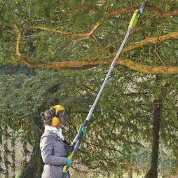 Corded Pole Chainsaw