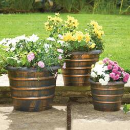 Beehive Planters  Pack Of 3
