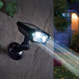Solar Security Spotlight