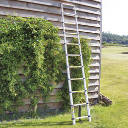 Telescopic Ladder  2.6m