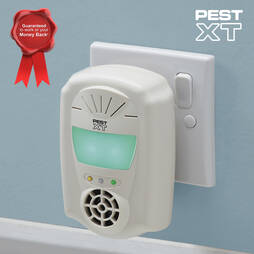 Pest XT 4In1 Indoor Ultrasonic Pest Repeller  Four Pack