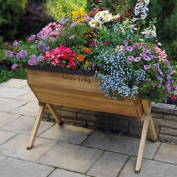 Grow Trug Traditional Wooden Planter (Large) + '25 Free Seed