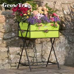 Black Grow Trug® by BVG Group Ltd Tuscan Planter including '20 of veg seed