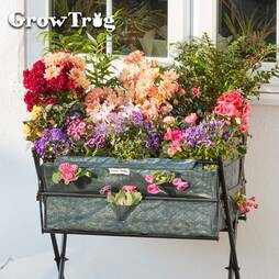 Grow Trug® by BVG Group Ltd Greenhouse Frame and Cover for Tuscan Planter