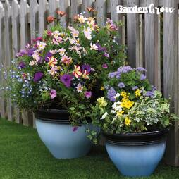 Garden Grow Set of Two Glazed Effect Planters  Brown