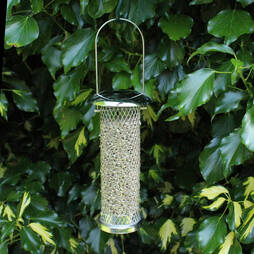 Kingfisher Stainless Steel Sunflower Seed Feeder