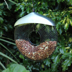 Kingfisher Deluxe Stainless Steel Donut Nut Feeder