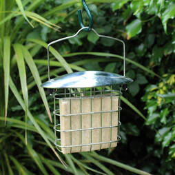 Kingfisher Stainless Steel Suet Cake Feeder