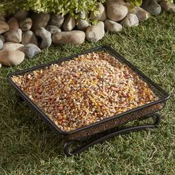 Gardman Compact Ground Wild Bird Feeder Tray