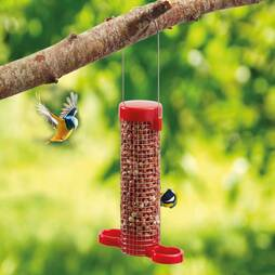 Get Set Go 2 Port Peanut Feeder