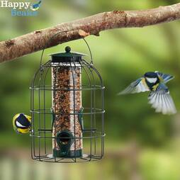 Nature?s Market Seed Feeder with Squirrel Guard