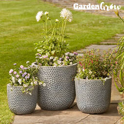 3Pack of Egg Planters