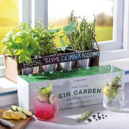 Thompson & Morgan Gin Garden Gift Set