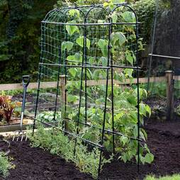 Garden Gear Pea Tunnel 1.8 x 1.8m