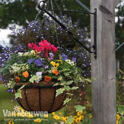 Garden Grow Hanging Basket & Liner