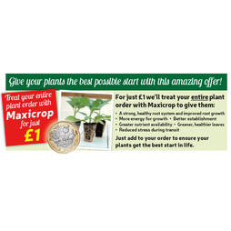Maxicrop Plant Treatment