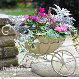 Metal Wheelbarrow Planter