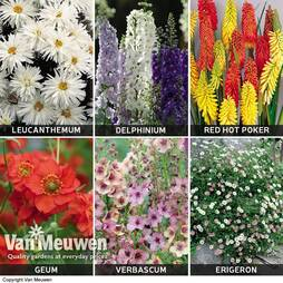Perfect Borders Perennial Collection