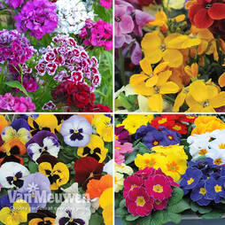 Spring Bedding Bumper Pack