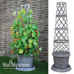 Tower Pot™ Modern Grey Collection