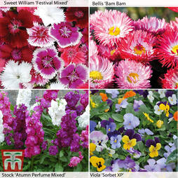 Garden Ready Winter Bedding Collection