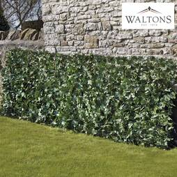 Waltons Artificial Ivy Fence