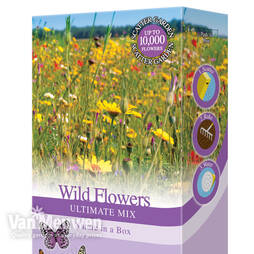 Wildflowers 'Ultimate Mix'