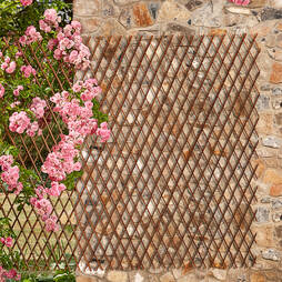 Willow Trellis 180 X 30CM Twin Pack