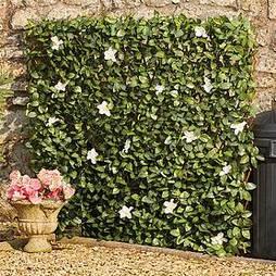 White Flower Hedge Trellis -1x2m