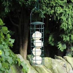 Kingfisher Green Powder Coated Suet Fat Ball Bird Feeder
