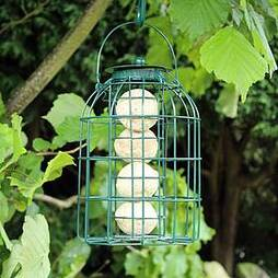Kingfisher Green Powder Coated Squirrel Guard Fat Ball Feeder