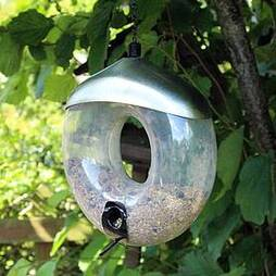 Kingfisher Deluxe Polished Steel Donut Seed Feeder