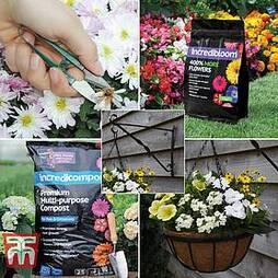 Hanging Garden Success Kit