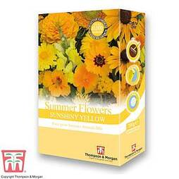 Summer Flowers Theme Yellow Scatter Pack