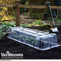 Mini Greenhouse Cloche