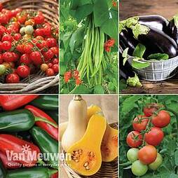Nurserymans Choice Vegetables