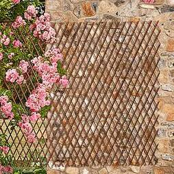 Extendable Willow Trellis - Twin Pack