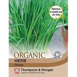 Chives 'Staro' - Organic Seeds