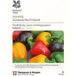 Sweet Pepper 'Mini Bell Mixed' (National Trust)