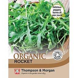 Herb Rocket (Cultivated) - Organic Seeds