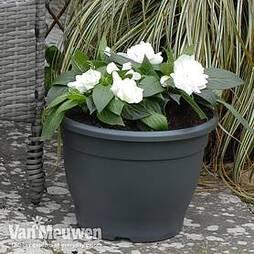Patio Planter Sabina Dark Grey