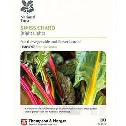 Swiss Chard 'Bright Lights' (National Trust)