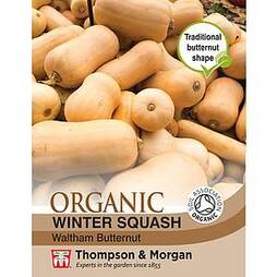 Squash 'Waltham Butternut' (Winter) - Organic Seeds
